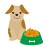 胆泥症対策の食事を見直す。国産で添加物ゼロのドッグフード考察